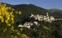 Cia Umbria: da Sellano a Palazzo Chigi, l'sos di un'imprenditrice agricola contro l'abbandono delle aree montane