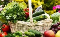 Cia Umbria lancia l'allarme: il mondo agricolo non urla, ma vive di incertezza
