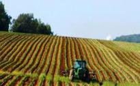 Pasqua amara per l'agricoltura, il bilancio in Umbria: i settori che hanno segnato le perdite maggiori e che vivono nell'incertezza totale