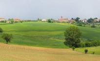 Cia Umbria: giuste le azioni proposte dall'Assessore Morroni per le aziende agricole